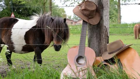 Over liefde tussen cowboys