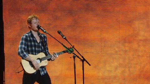 Ed Sheeran – Supermarket flowers